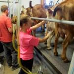 7th grade Sprout Creek Farm 2013 017