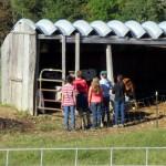 7th grade Sprout Creek Farm 2013 030