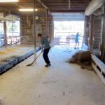 7th grade Sprout Creek Farm 2013 081