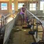 7th grade Sprout Creek Farm 2013 086