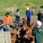 7th grade Sprout Creek Farm 2013 124
