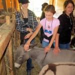 7th grade Sprout Creek Farm 2013 147