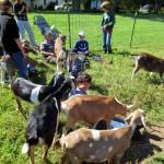 7th grade Sprout Creek Farm 2013 160