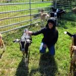 7th grade Sprout Creek Farm 2013 161