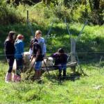 7th grade Sprout Creek Farm 2013 200