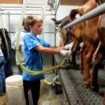 7th grade Sprout Creek Farm 2013 306