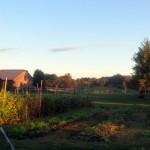 7th grade Sprout Creek Farm 2013 318