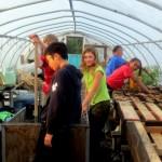 7th grade Sprout Creek Farm 2013 319