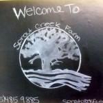 7th grade Sprout Creek Farm 2013 373