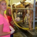 7th grade Sprout Creek Farm 2013 394