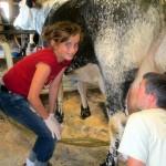 7th grade Sprout Creek Farm 2013 400