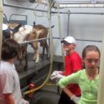 7th grade Sprout Creek Farm 2013 425