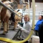 7th grade Sprout Creek Farm 2013 443