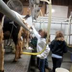 7th grade Sprout Creek Farm 2013 448