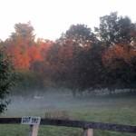 7th grade Sprout Creek Farm 2013 460