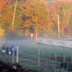 7th grade Sprout Creek Farm 2013 463